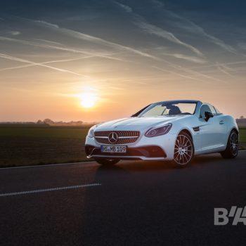 Autofotografie, die sich sehen lassen kann: Die Göttin weiß. (© Orths Medien GmbH)