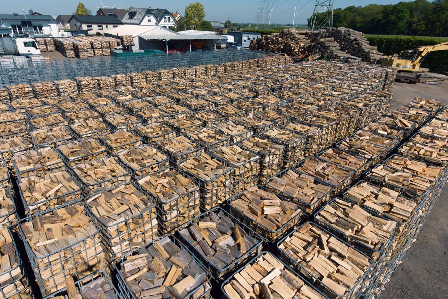 Das Holzlager des Forstbetriebs (© Orths Medien GmbH)